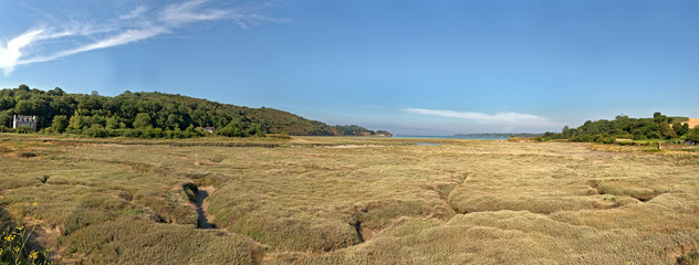 Coastal panoramic grass landscape with blue sky. Brittany. Franc