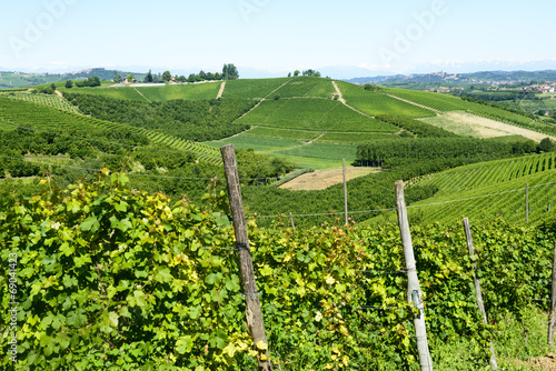 canvas print picture Summer landscape in Langhe (Italy)