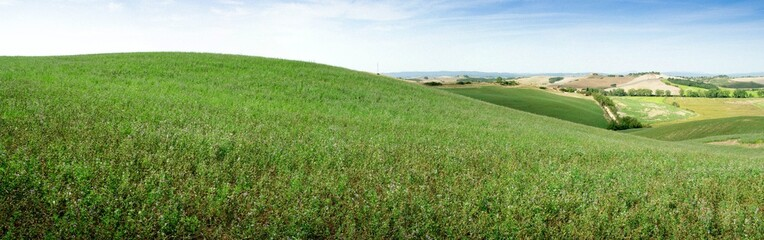 Panorama prairie, toscane