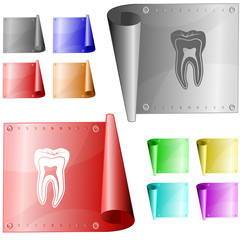 Tooth. Vector metal surface.