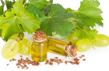 Grape seed oil with grape and grapevine