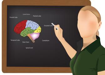 lezione di scienze