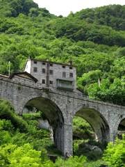 Rail Bridge Railway Track