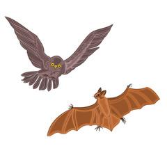 Halloween decoration owkt and bat horror set vector