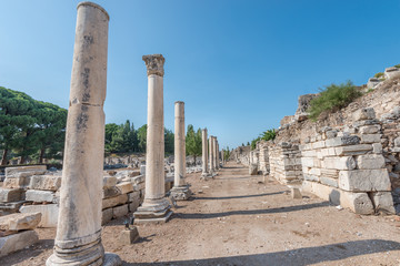road with ancient colums in Ephesus, Turkey