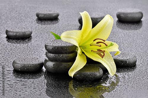 Żółta lilia z kamieniami bazaltowymi