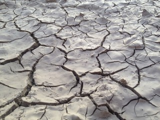çölleşme ve küresel ısınma