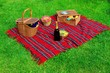 Picnic on the Lawn - 69049281