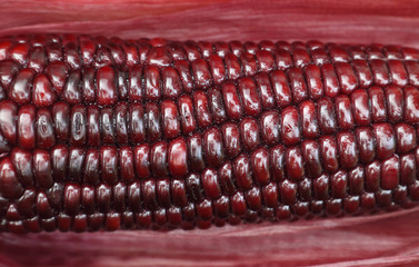 Brown corn
