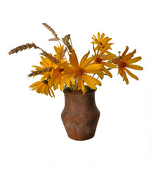 flowers in an old clay pot