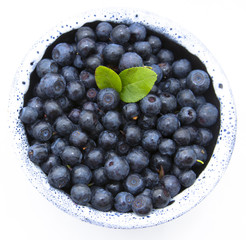 Fresh blueberries with leaves