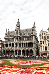 Flower Carpet in Grand Place, Brussels