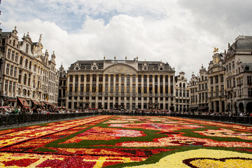 BRUSSELS, AUGUST 2014 : Flower Carpet in Grand Place on August 1