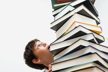 Портрет мальчика с книгами