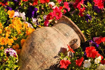Ancient amphora between flowers