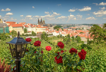 The view on the Prague's gothic Castle