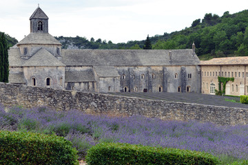 Abbey of Senanque and lavender in Provence, France