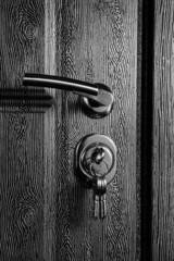 Black steel door with wood texture