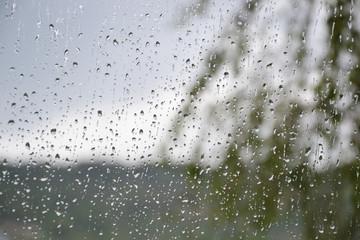 Raindrops on window glass