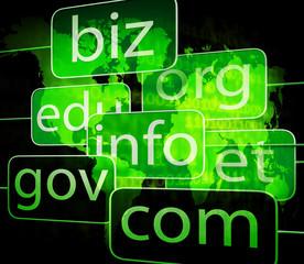 biz com net shows websites internet or seo