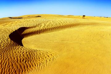 Sahara desert landscape with dunes. Tunisia.