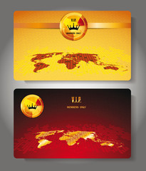 Plastic VIP cards with the world map
