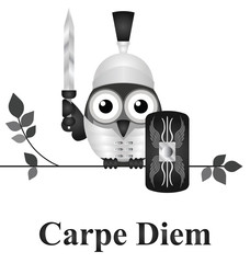 Latin Seize the Day message