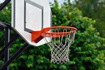Shield for streetball