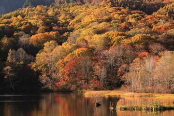 戸隠高原 紅葉の鏡池