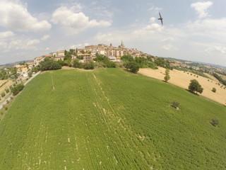 Vista aerea campi coltivati e paesaggio rurale con rondine