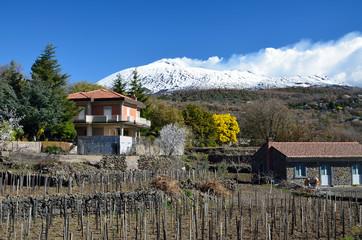 Italian village against the mountain Etna