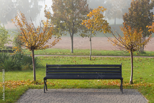 canvas print picture Autumn sakura trees and bench in the park