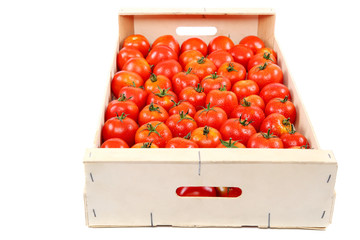Fresh red tomato in the drops of water in a wooden box.