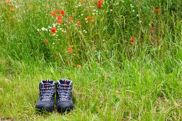 wandern in freier natur