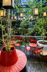 garden  inside hotel