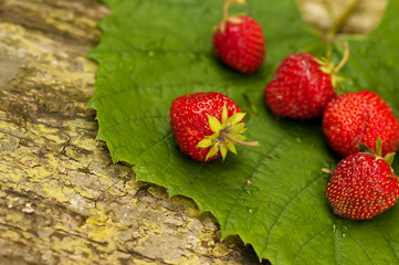 strawberry on green leaf.