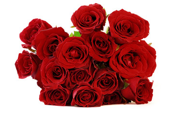 Maroon red roses bouquet on white background