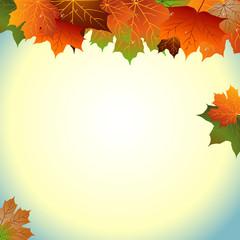 осенний фон с листьями и солнцем