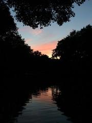 Sonnenuntergang am Neuen See in Berlin