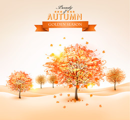 Autumn background with colorful leaves and trees.Vector illustra