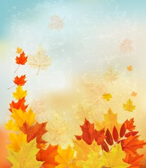 Autumn background with colorful leaves. Back to school Vector il