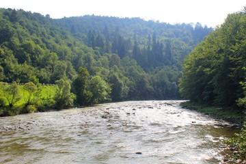 River in Carpathian mountains