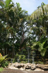 Cascade dans les Everglades