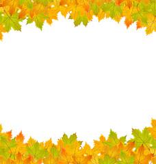 Hintergrund Blätter Herbst