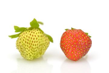 Ripe and unripe strawberries