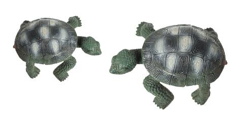 Tortoise Figures