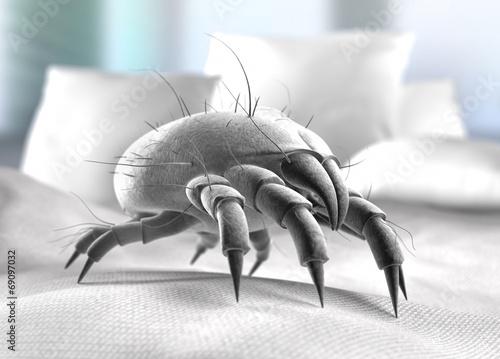 Leinwanddruck Bild Staubmilbe im Bett