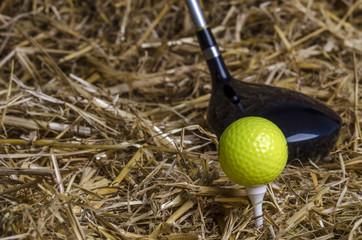 Golfball Tee Schläger