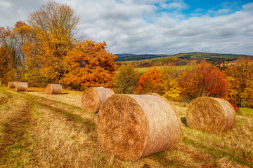 Fall in the countryside