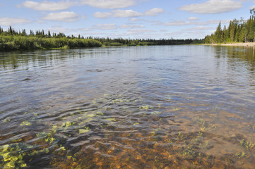 Solar landscape of Northern pebble river.